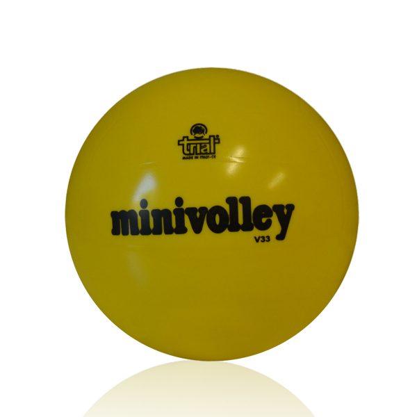 Il pallone da Minivolley